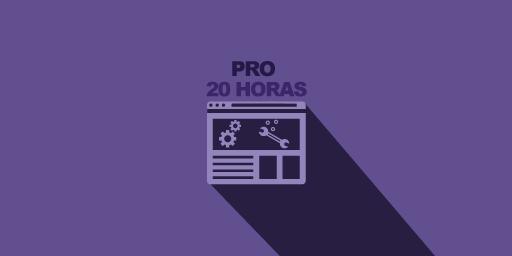 plan 20 horas de mantenimiento web